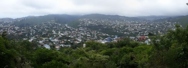 Karori from Te Ahumairangi
