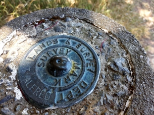 Mt Alfred Survey Mark