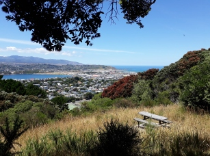 The view over Evans Bay from Mt Alfred
