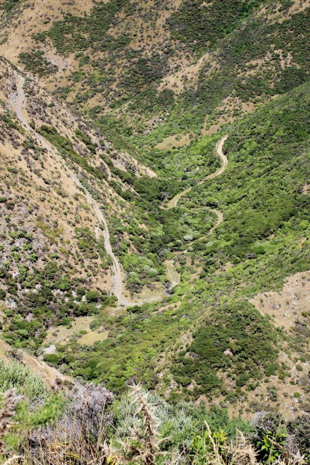 Te Kopahou gully